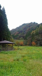chi_area_kikizake_1611_c (06).jpg