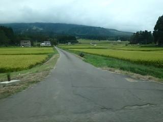 chi_camp_sasagamine_1509(26).jpg