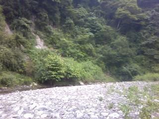 chi_park_kacamp_1407_04.jpg