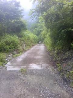 chi_park_kacamp_1407_15.jpg