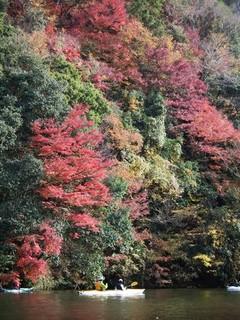 chi_park_kameyama_1312_27.jpg