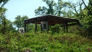chi_park_kasuga_1505_(06).jpg