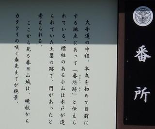 chi_park_kasuga_1505_(10).jpg