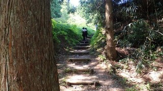 chi_park_kasuga_1505_(17).jpg