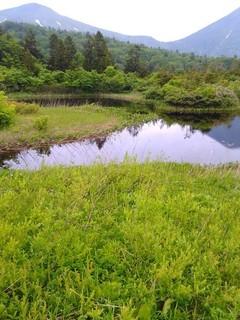 chi_park_oirasetowada_1706 (06).JPG