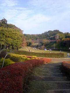 chi_park_sakata_1111_01.jpg