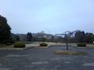 chi_park_takaraike_1001_3.jpg