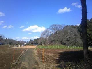 chi_park_yositaka_1203_25.jpg