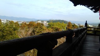 chi_temp_nanzenji_201703_(15).JPG